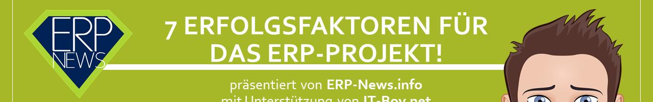 7 Erfolgsfaktoren ERP-Projekt